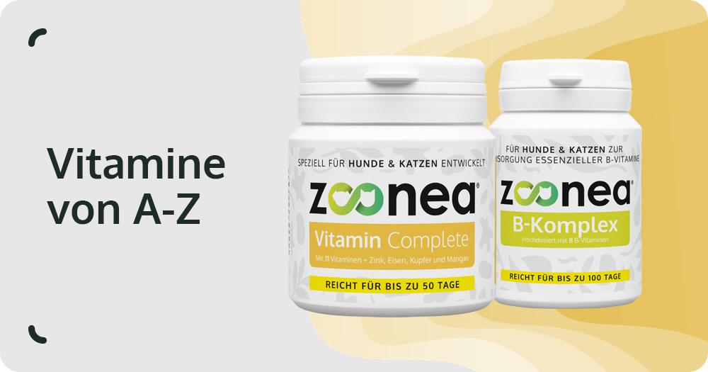 vitamine hund katze